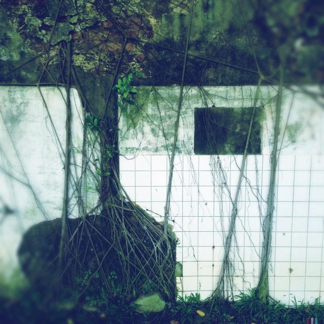 安平樹屋,台南